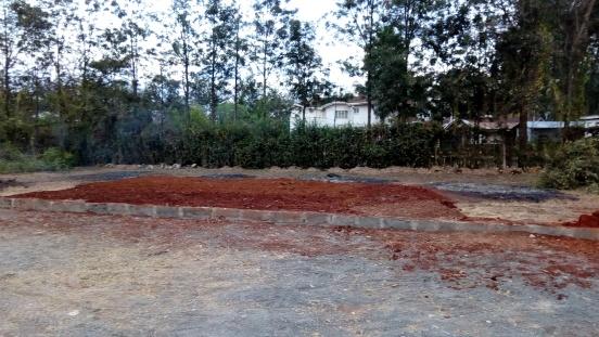 Ogród warzywny i hodowla kur w Nairobi (Kenia)