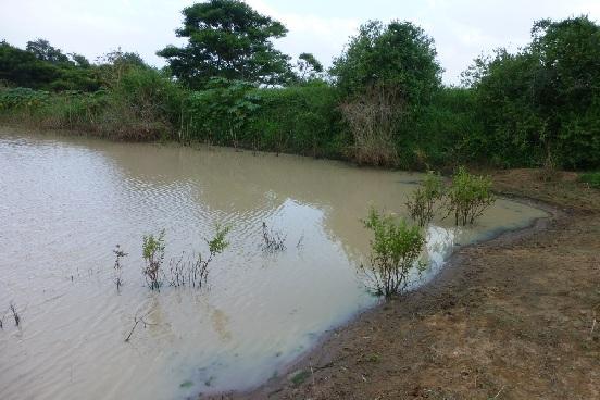 Współfinansowanie odwiertu studni w Kwamneke-Kolana (Tanzania)